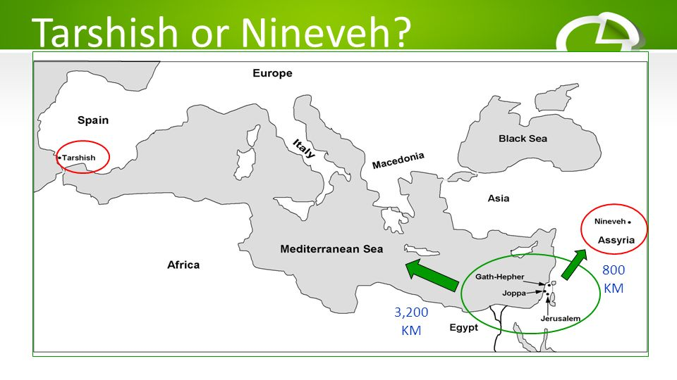 Tarshish or Nineveh 800 KM 3,200 KM
