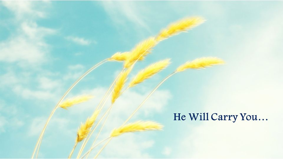 He Will Carry You…