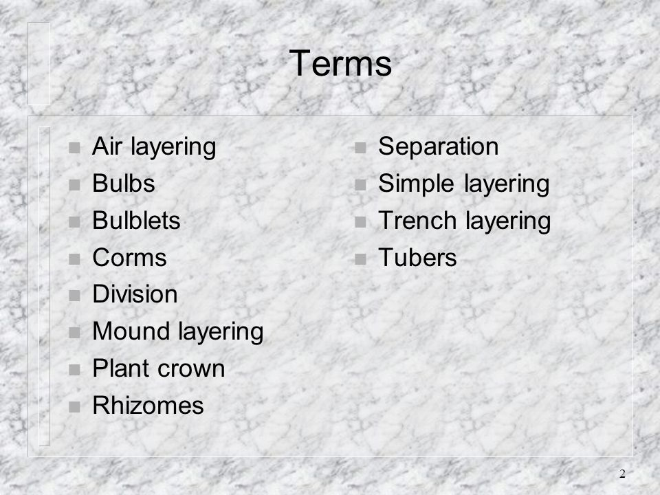 Terms Air layering Bulbs Bulblets Corms Division Mound layering