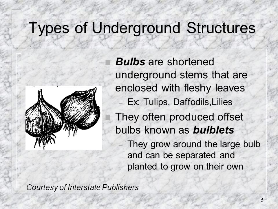 Types of Underground Structures