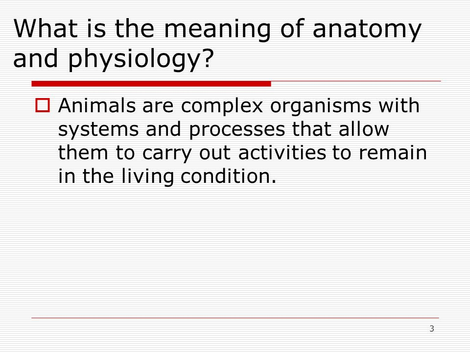 What is the meaning of anatomy and physiology