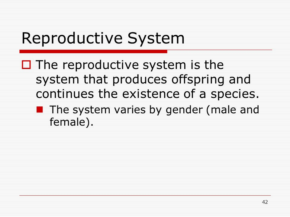 Reproductive System The reproductive system is the system that produces offspring and continues the existence of a species.