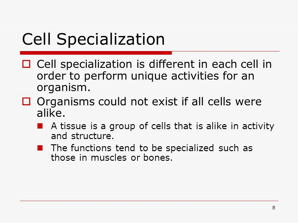 Cell Specialization Cell specialization is different in each cell in order to perform unique activities for an organism.