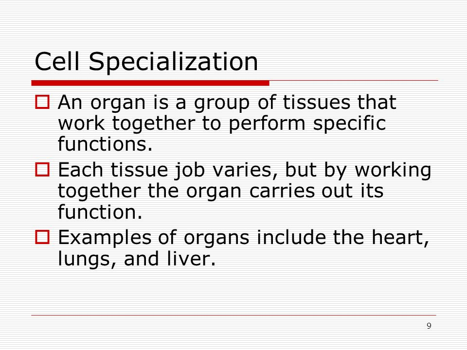 Cell Specialization An organ is a group of tissues that work together to perform specific functions.