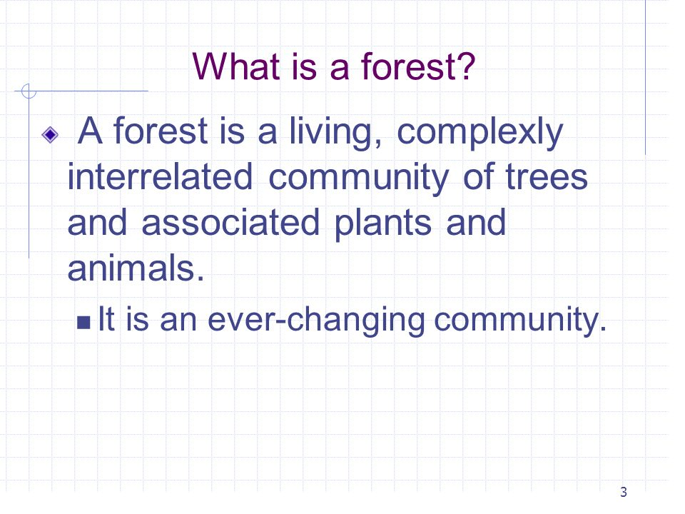 What is a forest A forest is a living, complexly interrelated community of trees and associated plants and animals.