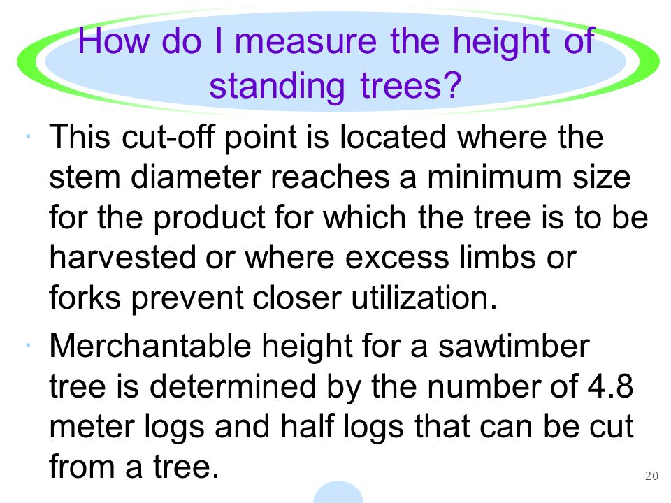 How do I measure the height of standing trees