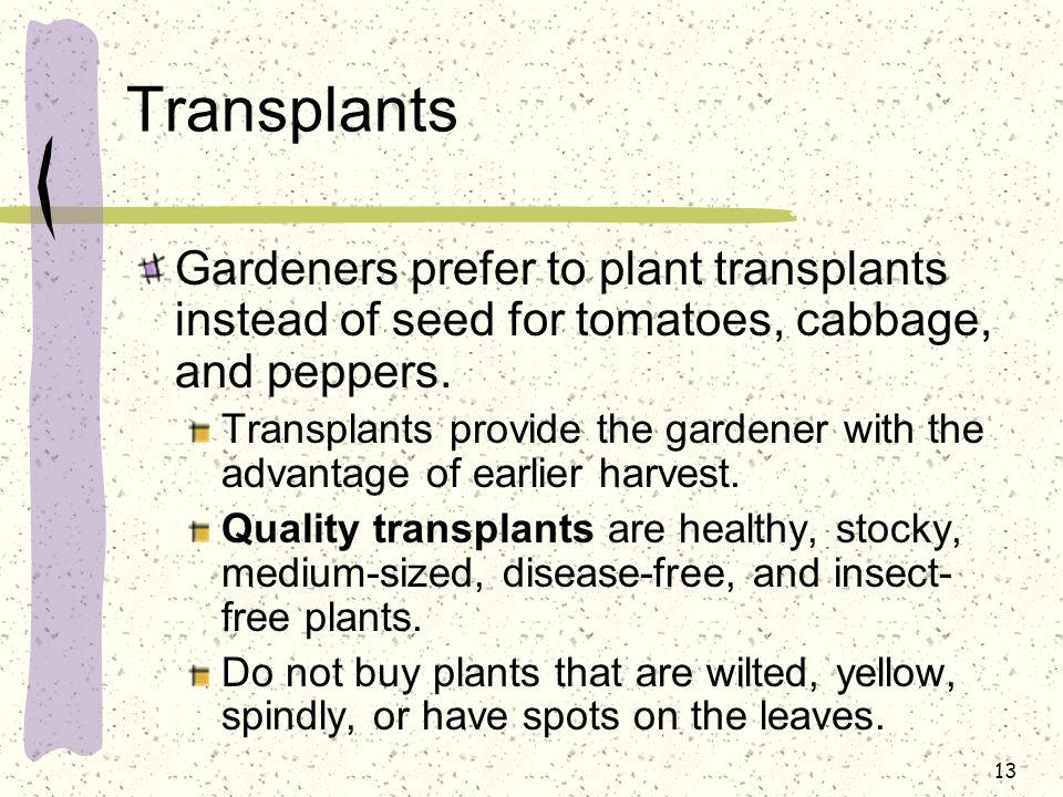 Transplants Gardeners prefer to plant transplants instead of seed for tomatoes, cabbage, and peppers.