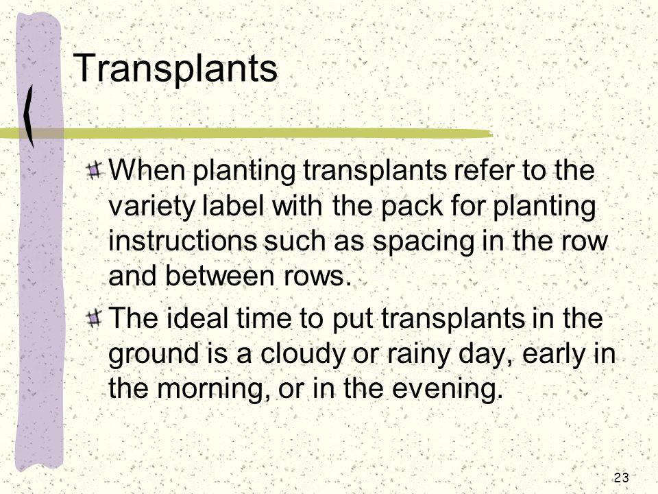 Transplants When planting transplants refer to the variety label with the pack for planting instructions such as spacing in the row and between rows.