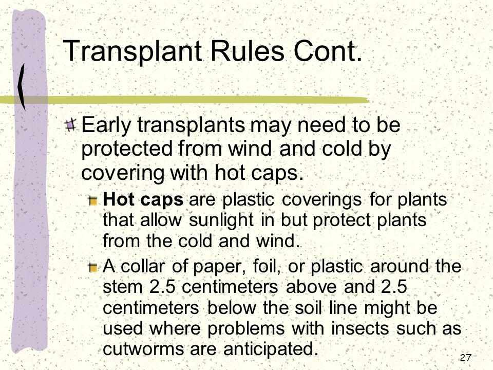Transplant Rules Cont. Early transplants may need to be protected from wind and cold by covering with hot caps.