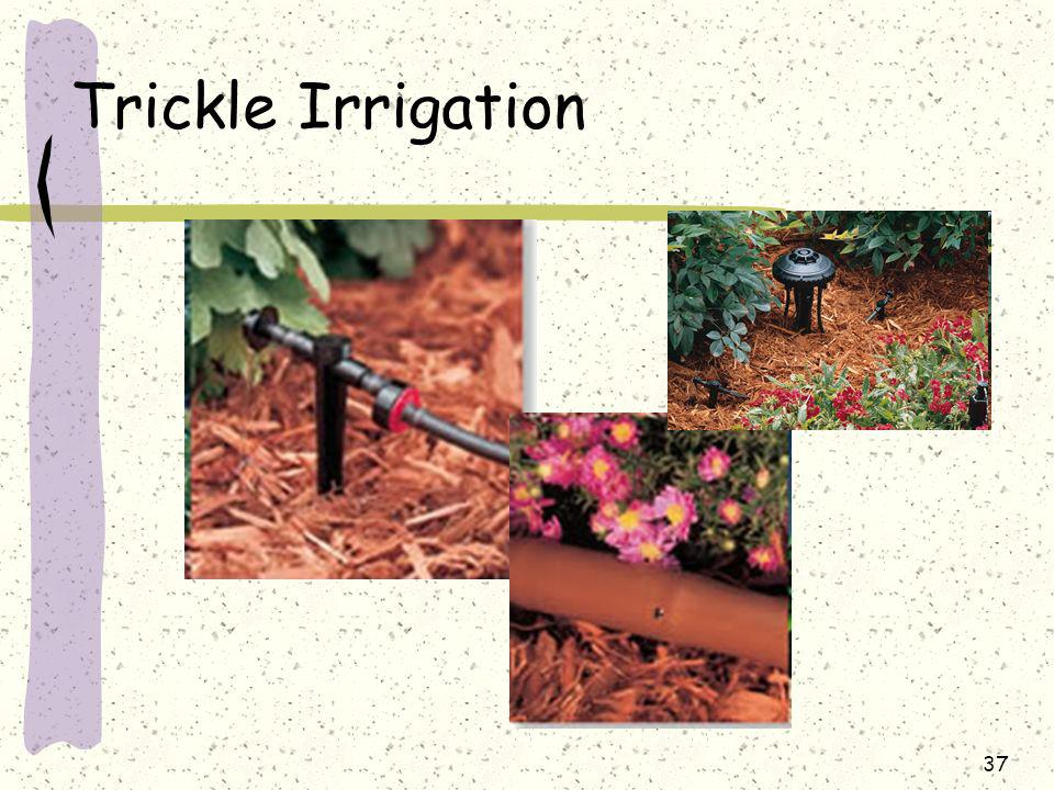 Trickle Irrigation