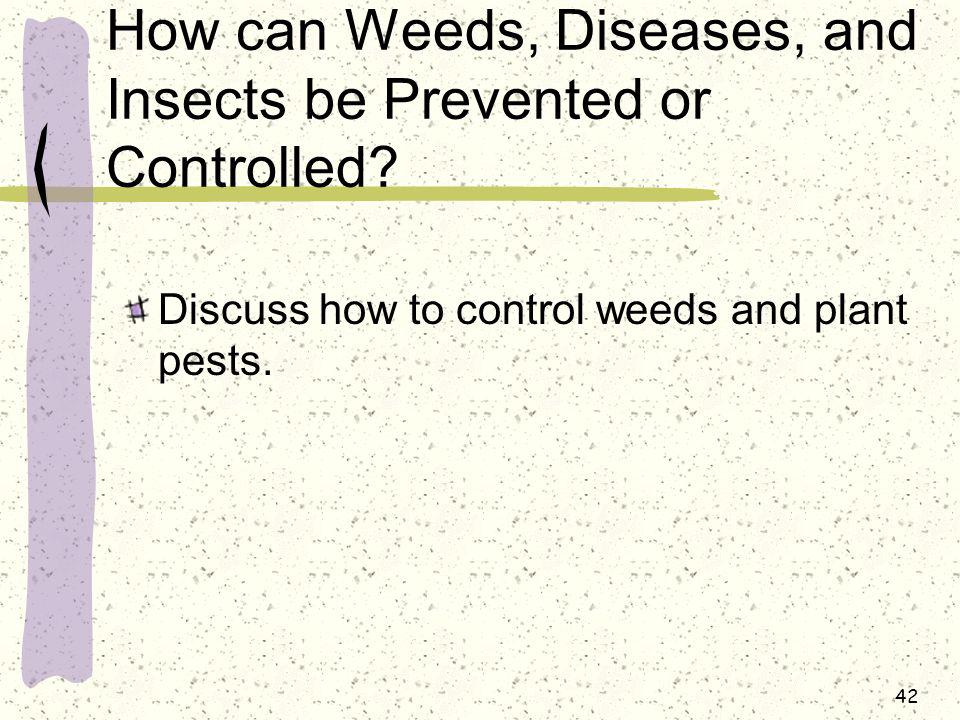 How can Weeds, Diseases, and Insects be Prevented or Controlled