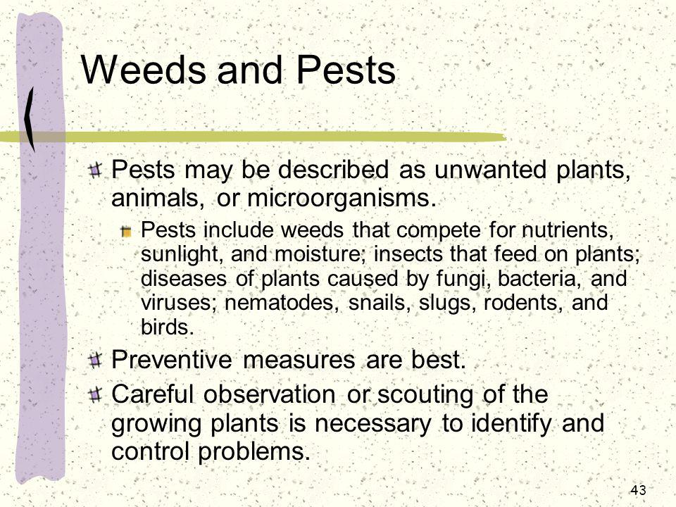 Weeds and Pests Pests may be described as unwanted plants, animals, or microorganisms.