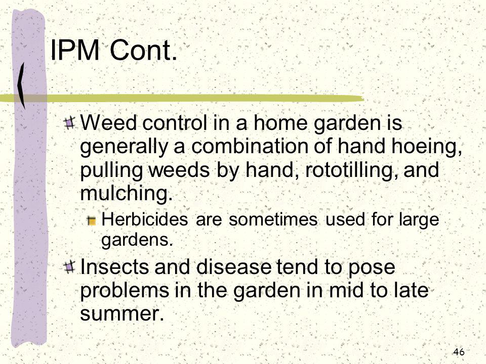 IPM Cont. Weed control in a home garden is generally a combination of hand hoeing, pulling weeds by hand, rototilling, and mulching.