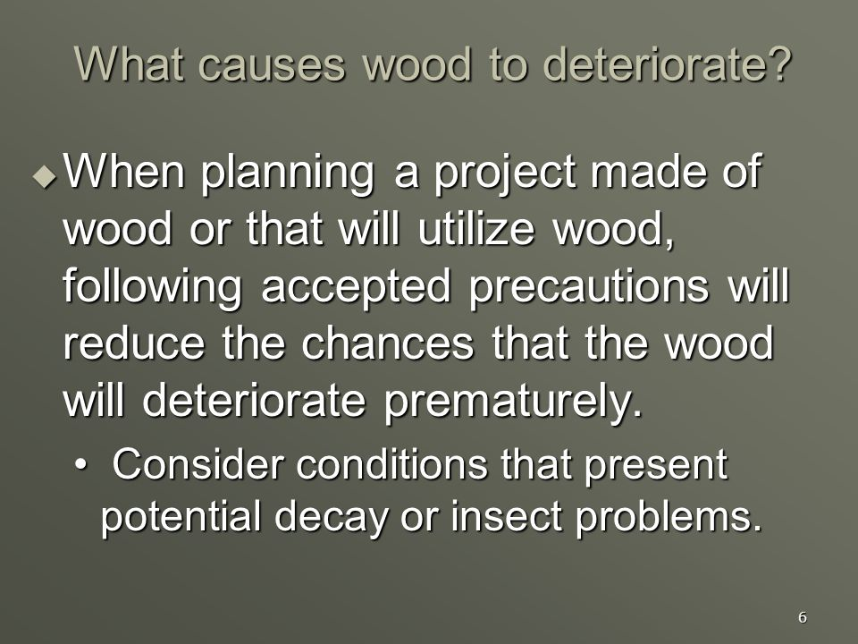 What causes wood to deteriorate