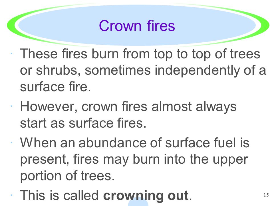 Crown fires These fires burn from top to top of trees or shrubs, sometimes independently of a surface fire.