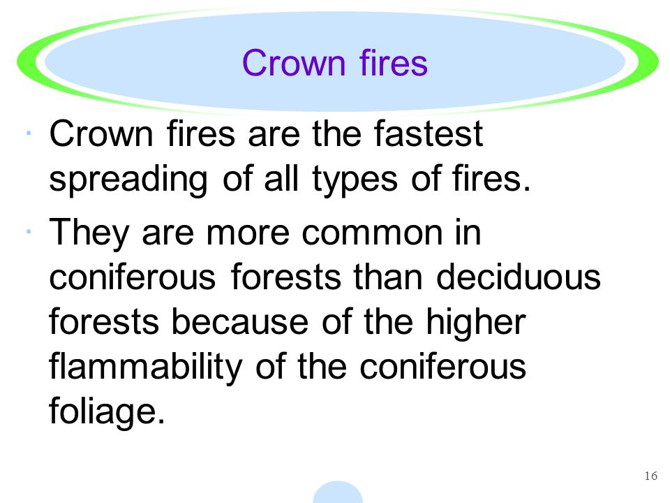 Crown fires Crown fires are the fastest spreading of all types of fires.