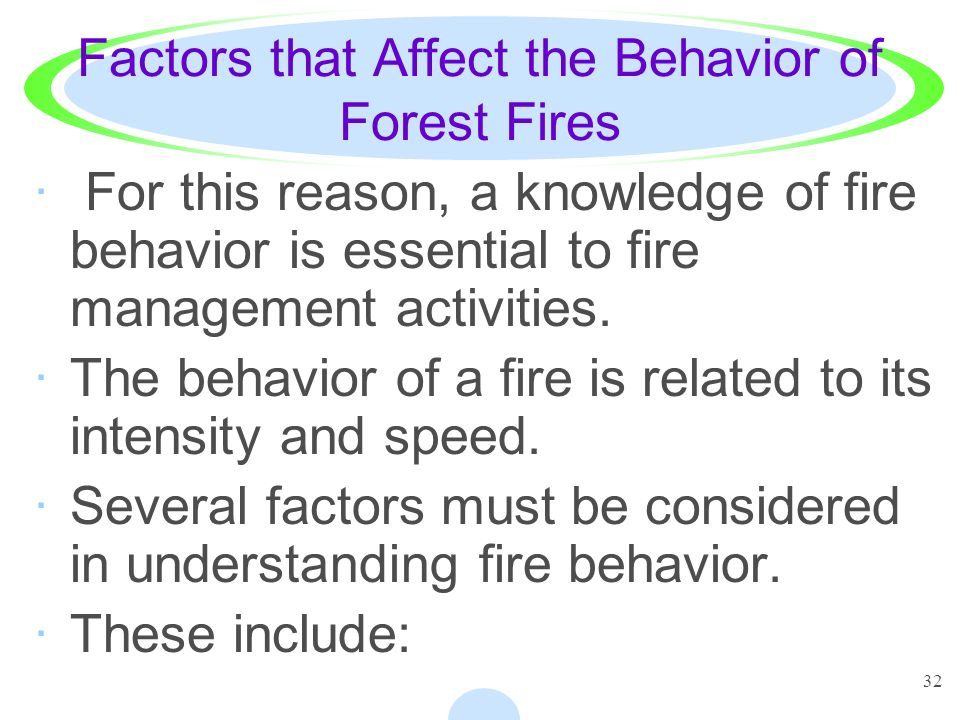 Factors that Affect the Behavior of Forest Fires