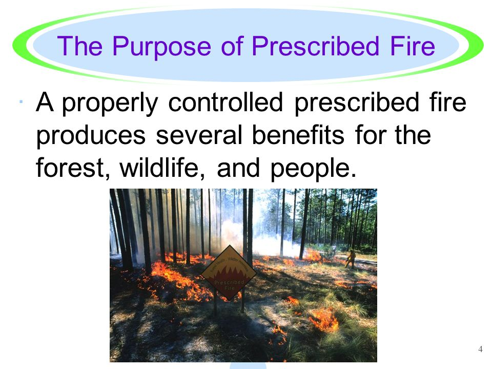 The Purpose of Prescribed Fire