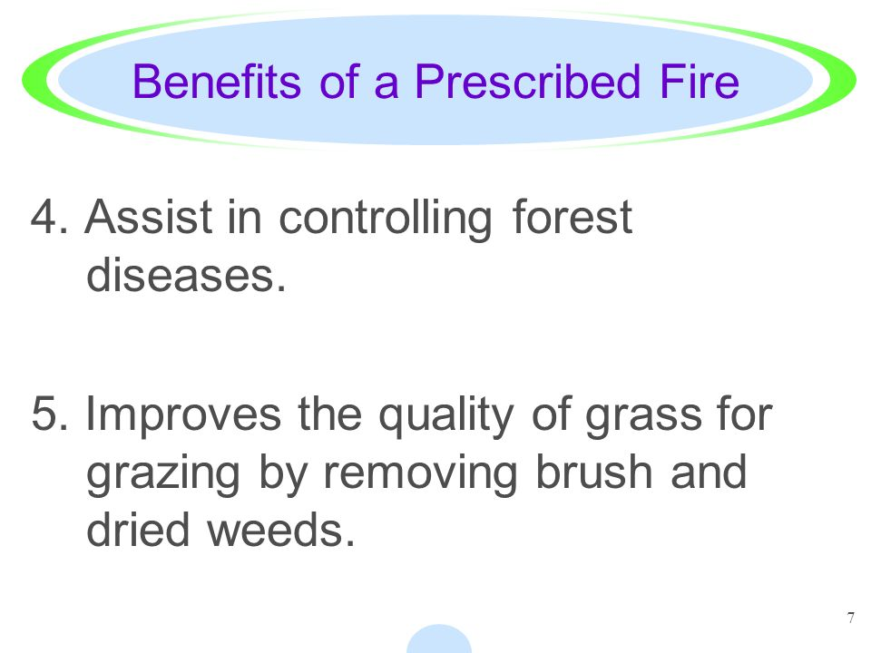 Benefits of a Prescribed Fire