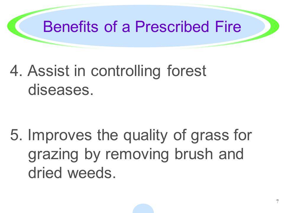 Benefits of a Prescribed Fire