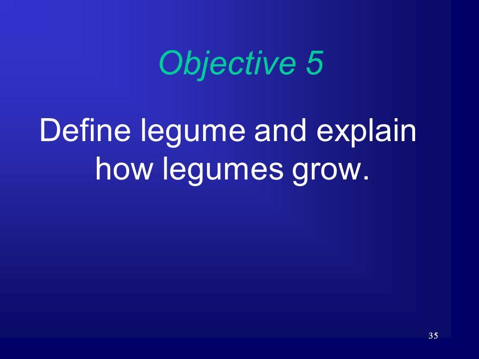 Define legume and explain how legumes grow.