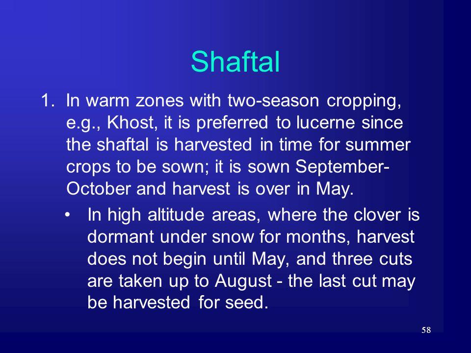 Shaftal