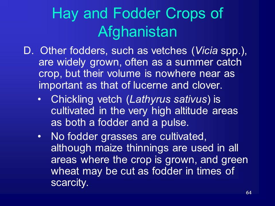 Hay and Fodder Crops of Afghanistan