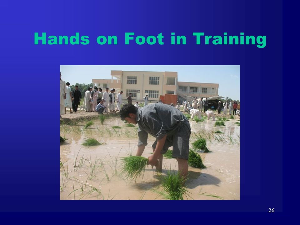 Hands on Foot in Training
