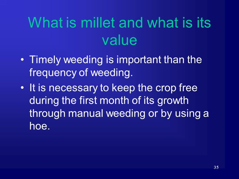 What is millet and what is its value