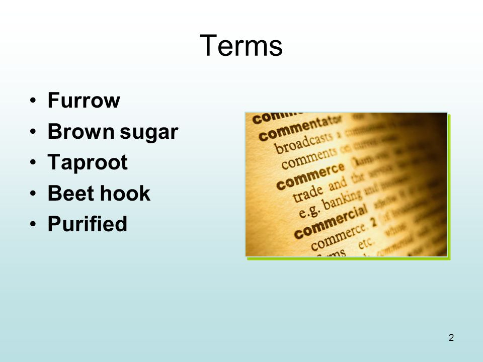 Terms Furrow Brown sugar Taproot Beet hook Purified