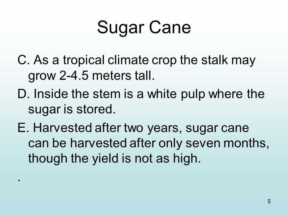Sugar Cane C. As a tropical climate crop the stalk may grow 2-4.5 meters tall. D. Inside the stem is a white pulp where the sugar is stored.