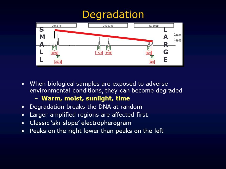 Degradation SMALL LARGE