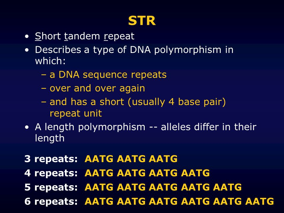 STR Short tandem repeat Describes a type of DNA polymorphism in which: