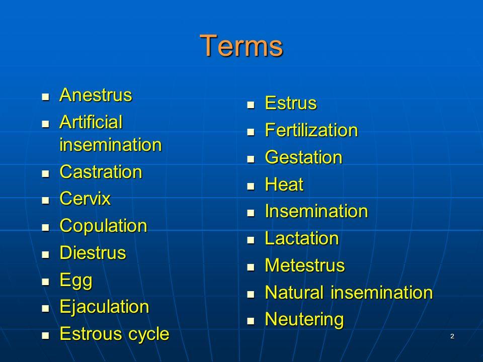 Terms Anestrus Estrus Artificial insemination Fertilization Gestation