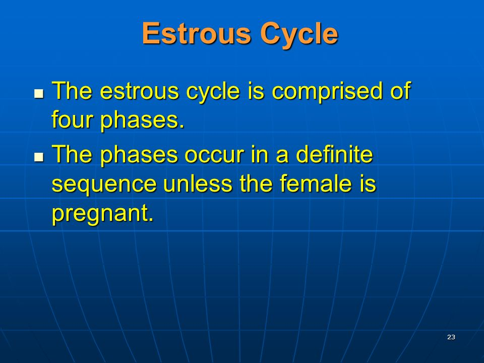 Estrous Cycle The estrous cycle is comprised of four phases.