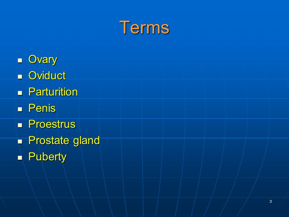 Terms Ovary Oviduct Parturition Penis Proestrus Prostate gland Puberty