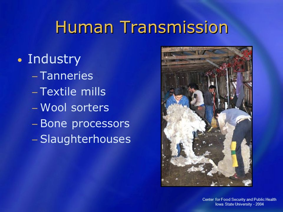 Human Transmission Industry Tanneries Textile mills Wool sorters