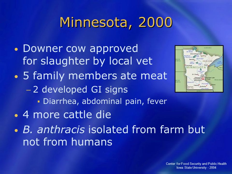 Minnesota, 2000 Downer cow approved for slaughter by local vet