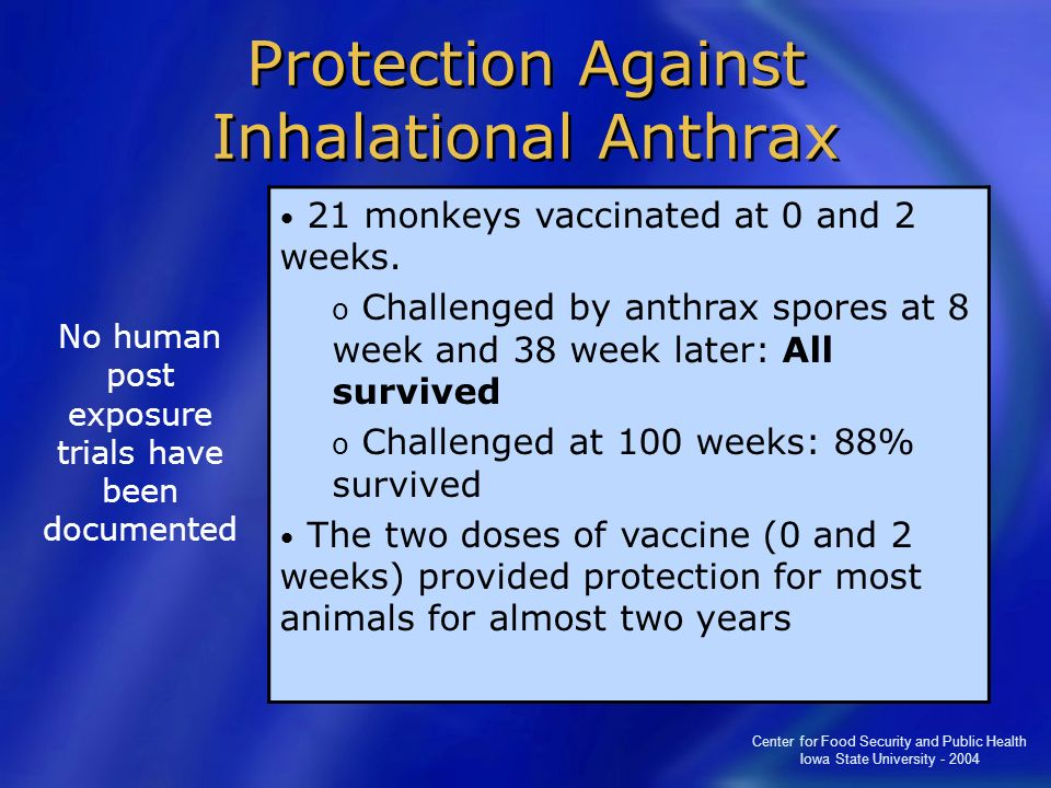 Protection Against Inhalational Anthrax