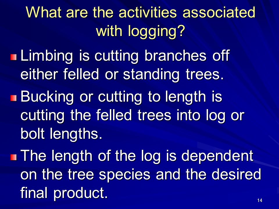 What are the activities associated with logging
