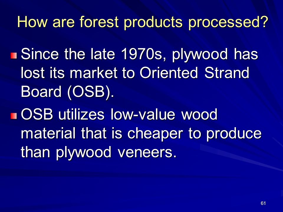 How are forest products processed