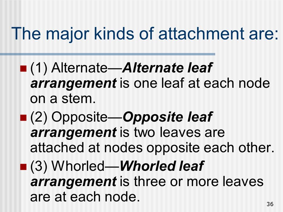 The major kinds of attachment are: