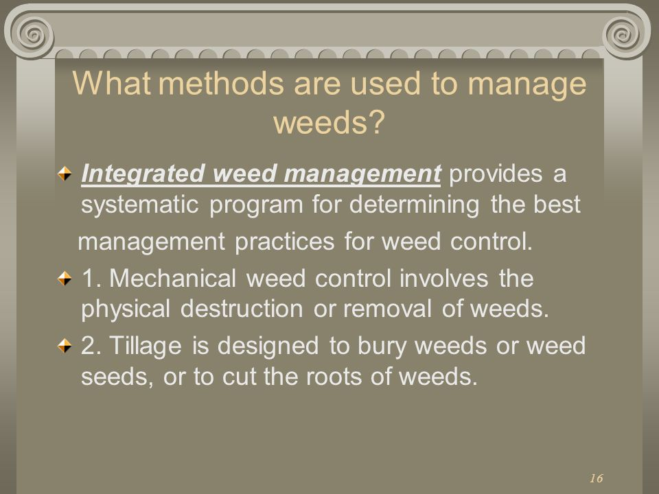 What methods are used to manage weeds