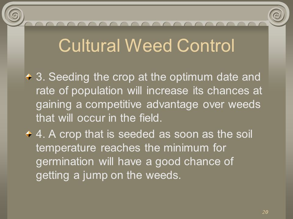 Cultural Weed Control