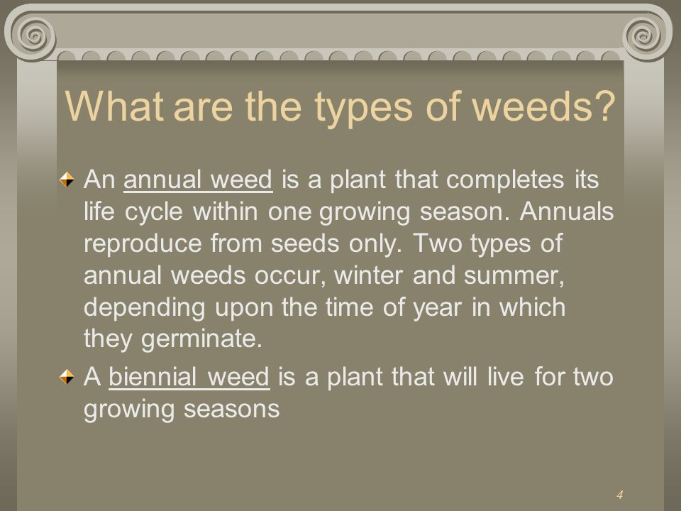 What are the types of weeds