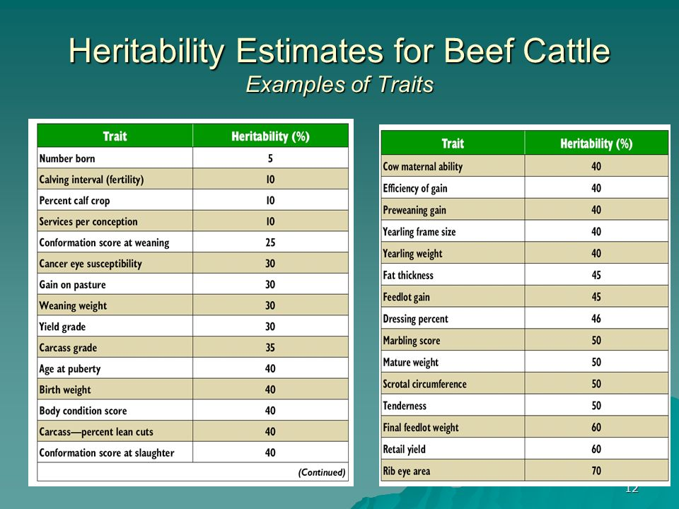 Heritability Estimates for Beef Cattle Examples of Traits