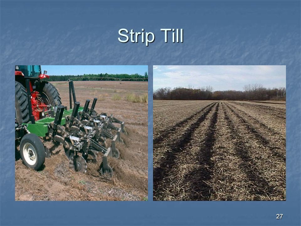 Strip Till