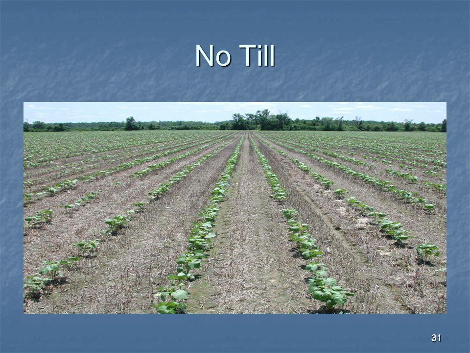 No Till