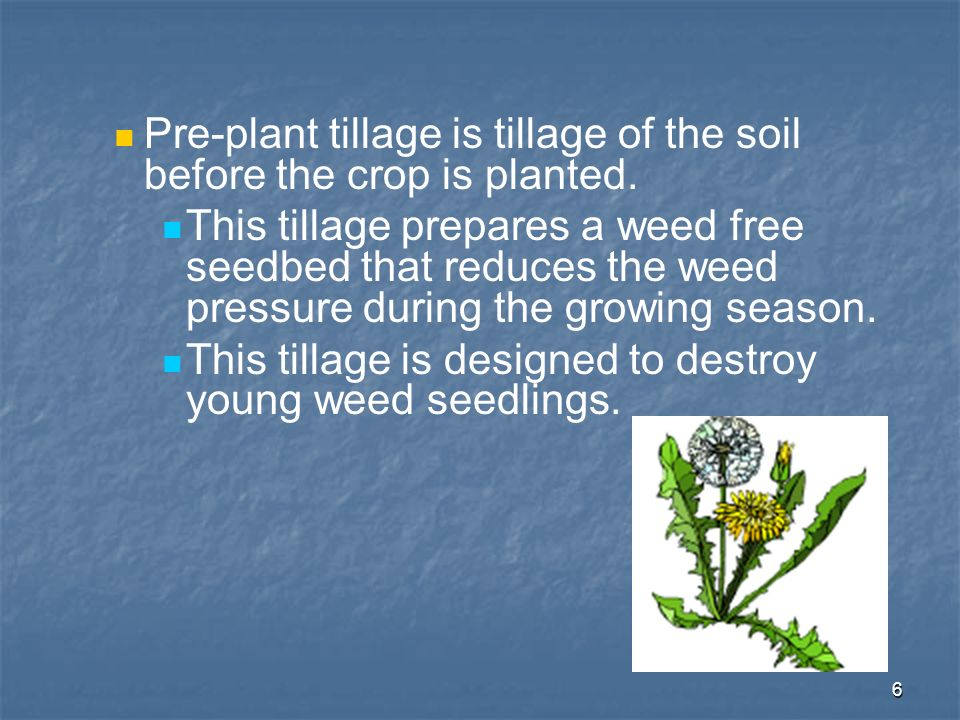 Pre-plant tillage is tillage of the soil before the crop is planted.