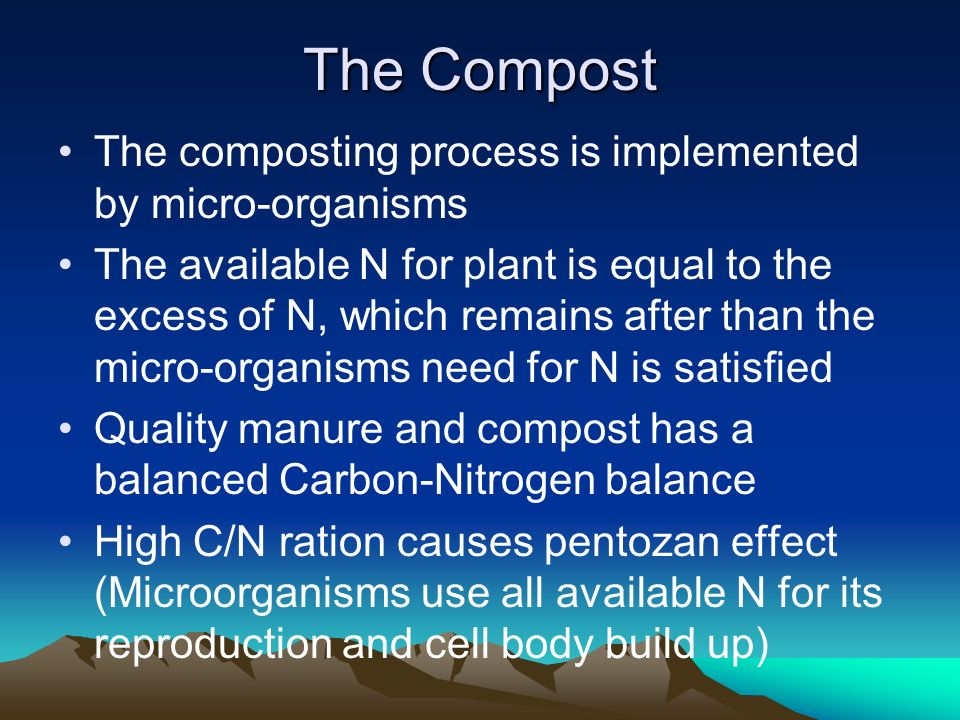 The Compost The composting process is implemented by micro-organisms